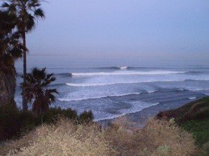 day5_swamis_am6_good2