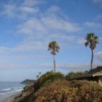 海と空が輝くベストシーズンにサンディエゴのサーフ&ヨガの街でお会いしましょう!